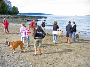 "subset of the virtual ""community"" of boxer lovers - Vancouver Boxer Meetup meeting face-to-face at Vanier Park in Kitsilano"
