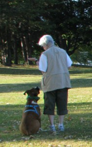 Freckle and Mary-Doug training at Vanier Park